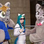 MCM Manchester Comic Con 2016, Cosplay, Cosplayers, Male, Female, My Little Pony, Comics, TV Series, Furr Suits, Pony, Cat Ears, Top, Pants, Wig, Sun Glasses, Grey, Brown, Black, Blue, Green ...